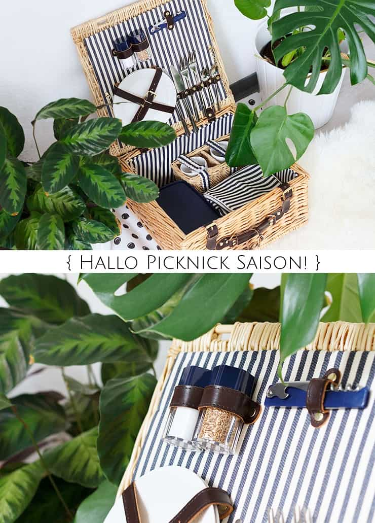 hallo picknick saison 4 leckere rezepte zum mitnehmen. Black Bedroom Furniture Sets. Home Design Ideas